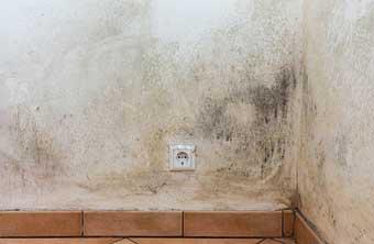 Condensación en las paredes