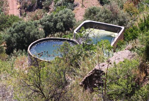 Reserva de agua para el ganado