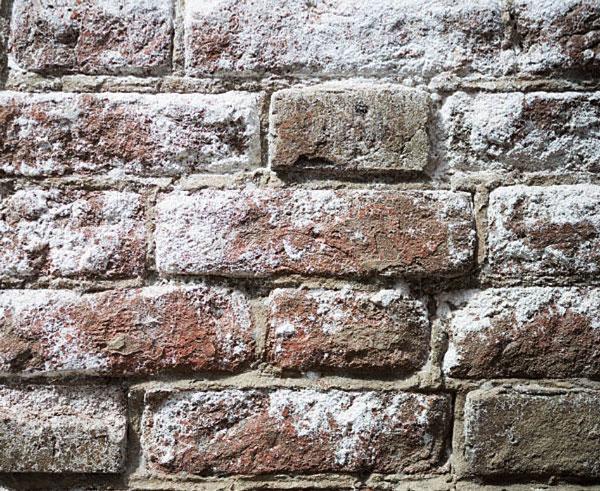 Sales en en paredes y muros