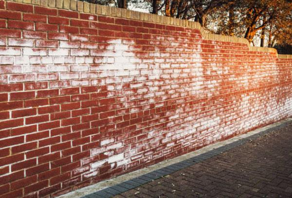 Ascenso de humedad por la pared