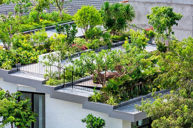 El jardín en una cubierta de techos vegetal
