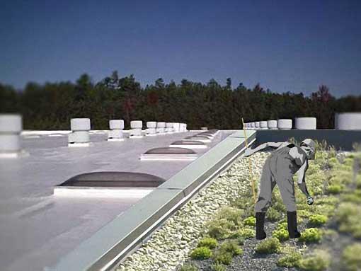 Techos calientes · Construir un techo blanco o uno verde