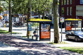 Techos verdes en las paradas de autobús